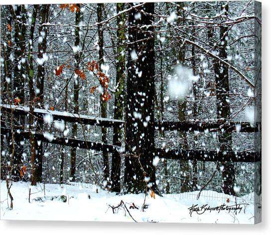 Supersized Snowflakes Canvas Print by Ruth Bodycott