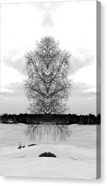 Suspended Tree Canvas Print