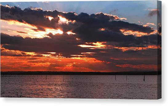 Swan Bay Sunset Canvas Print