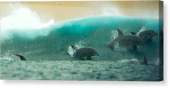 Swim Thru Canvas Print