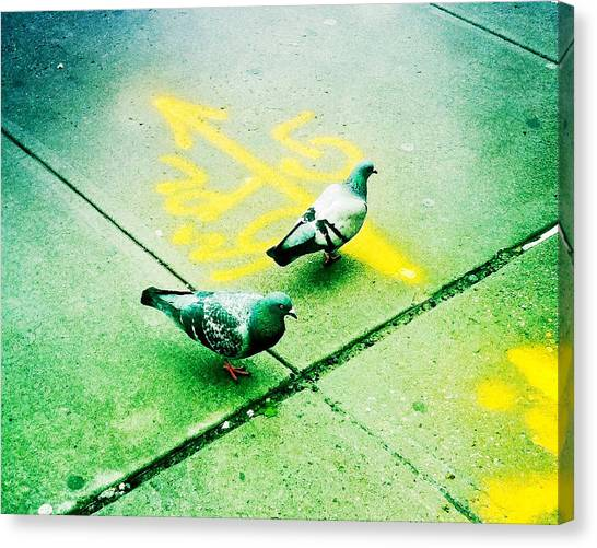 T-squared Doves Canvas Print