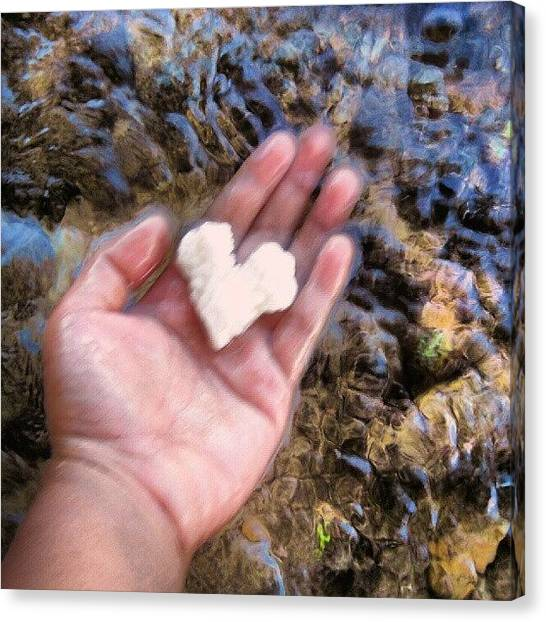 Seashells Canvas Print - Take Care Of This Heart In My Hand by Jade Merillana