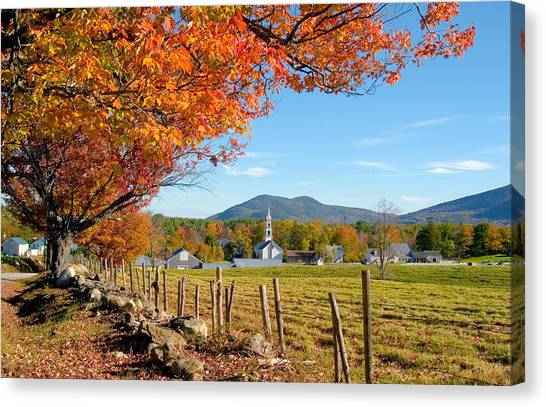 Tamworth Trees Autumn Canvas Print