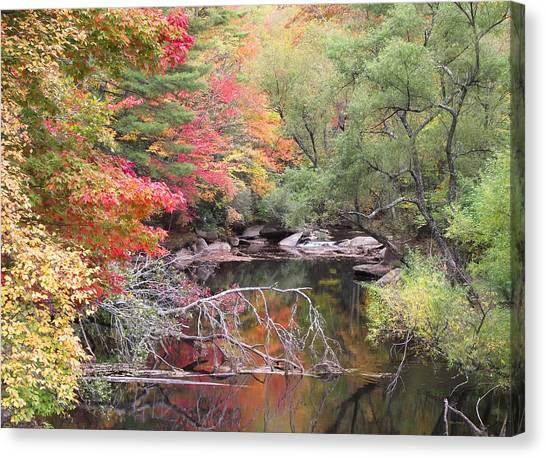 Tanasee Creek In The Fall Canvas Print
