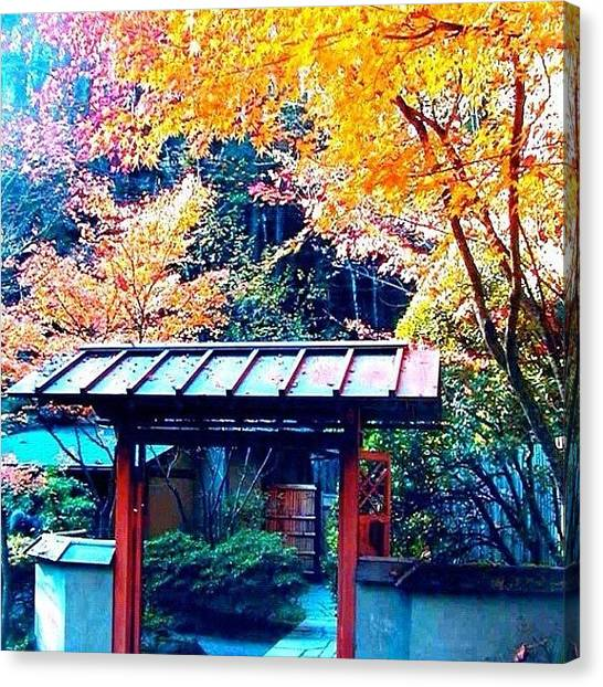 Tea Canvas Print - Tea House Gate In The Fall by Anna Porter