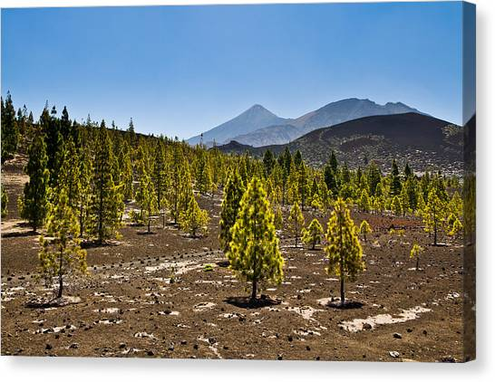 Technicolor Teide Canvas Print
