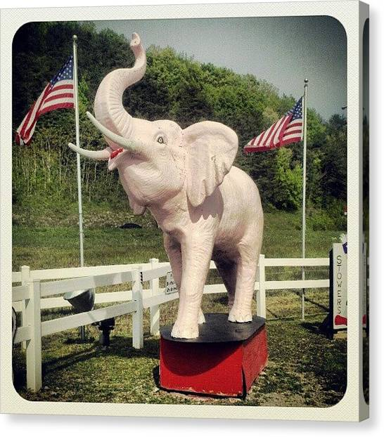 Tennessee Canvas Print - Tennessee Truckstop Pink Elephant by Melissa Wyatt