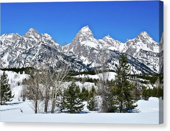 Teton Winter Landscape Canvas Print