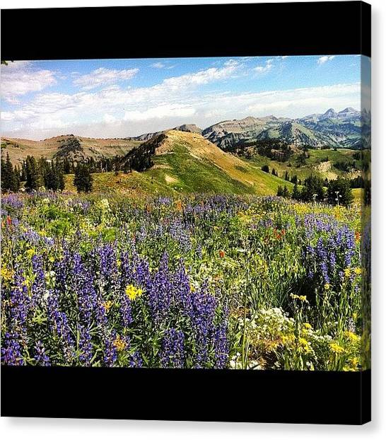 Tetons Canvas Print - #tetons #jacksonhole #hiking #mountains by Niels Rasmussen