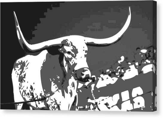 The University Of Texas Canvas Print - Texas Bevo Bw3 by Scott Kelley
