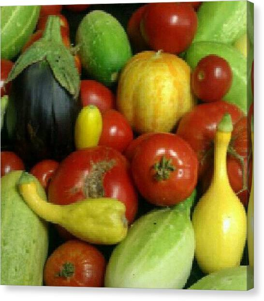 Vegetarian Canvas Print - Texas Bounty...home Grown On My Friends by Jedi Fuser