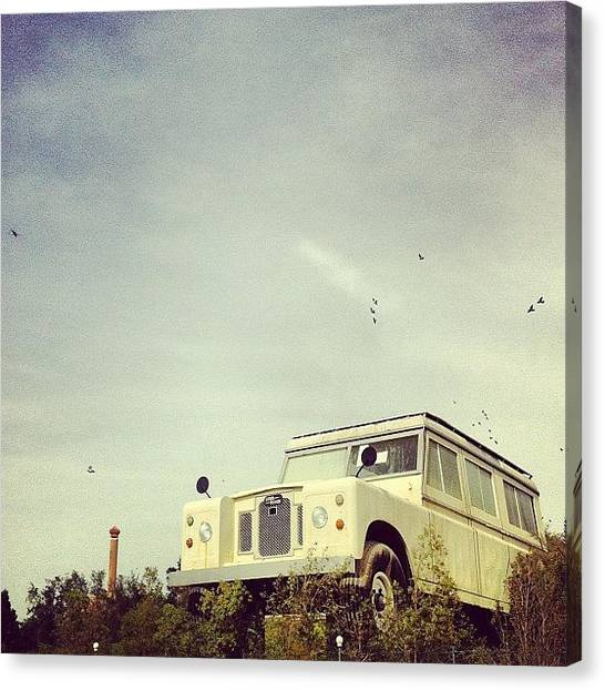 Large Birds Canvas Print - That's One Big Car by George Saad