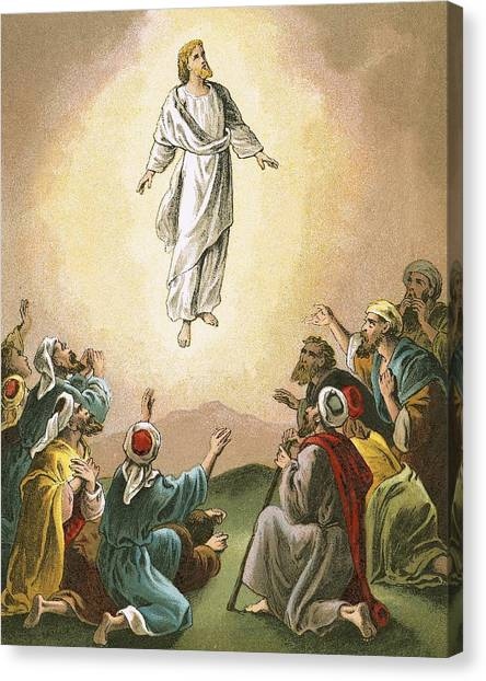 Ascension Canvas Print - The Ascension by English School