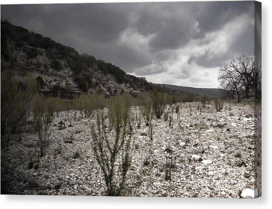The Bank Of The Nueces River Canvas Print