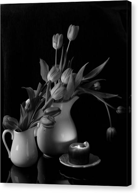 The Beauty Of Tulips In Black And White Canvas Print
