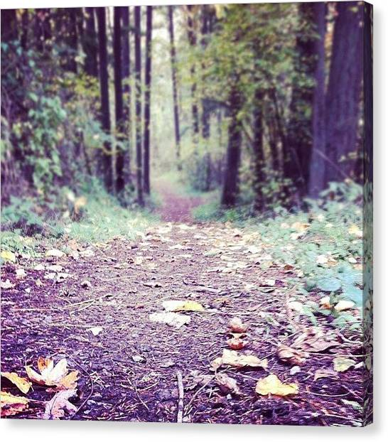 Pathway Canvas Print - The Best Part Of Walking On A Drizzling by Karen Clarke