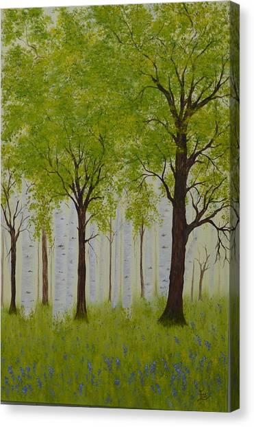 The Birch Grove Canvas Print