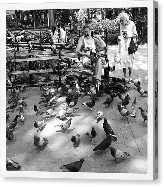 Irish Canvas Print - The Birdman Of Washington Square Park by Irish Mike Rachel