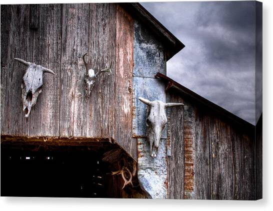 The Broad Side Of A... Canvas Print by Pixel Perfect by Michael Moore