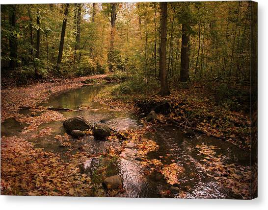 The Brook In The Woods Canvas Print