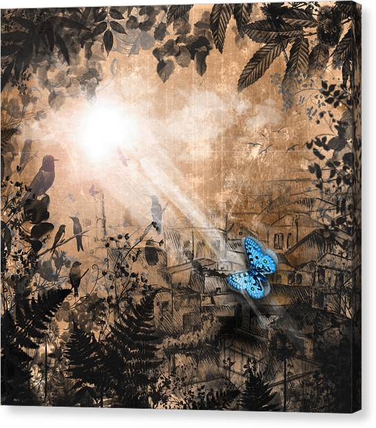 The Butterfly That Thought It Was A Moth Canvas Print by Carly Ralph