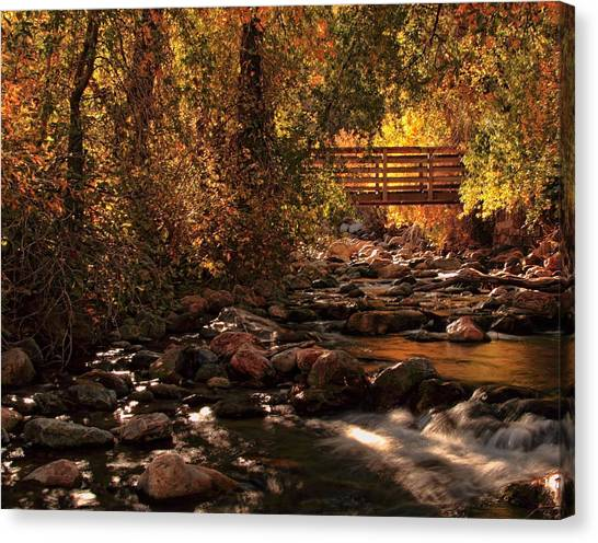 The Color Of Autumn Canvas Print by Gene Praag