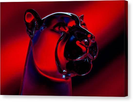 Washington State University Canvas Print - The Cougar by David Patterson