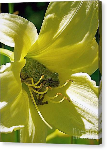 The Day Lily Met Her Prince Canvas Print