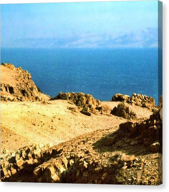 Israeli Canvas Print - The Dead Sea, I Think Taken From Ein by Shelley Walsh