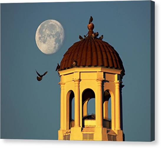The Dome Canvas Print