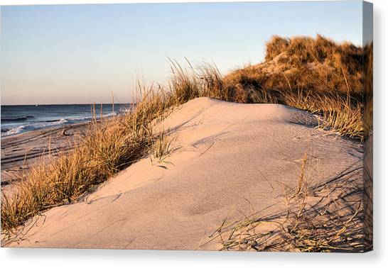 The Dunes Of Jones Beach Canvas Print by JC Findley