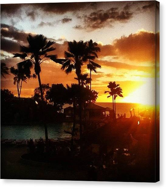 Palm Trees Sunsets Canvas Print - The Easy Life by Anthony Chin