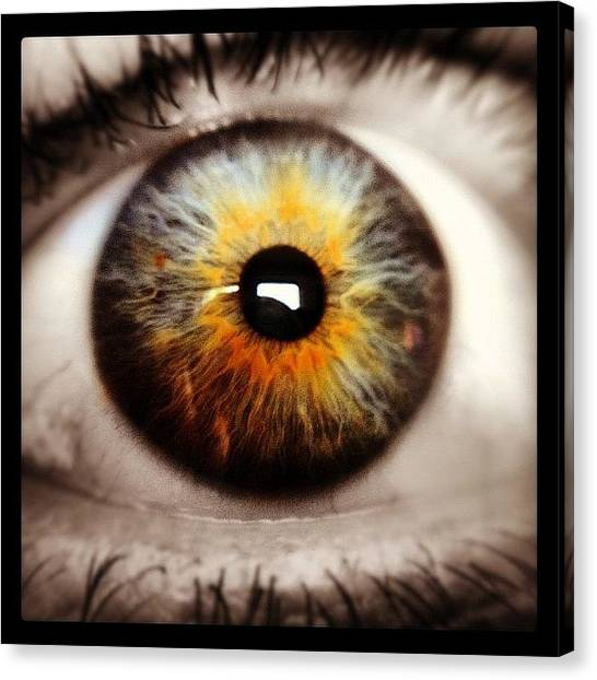 Irises Canvas Print - The Eye Of My Life #macro #iphone by Sebastian Bernhardtz