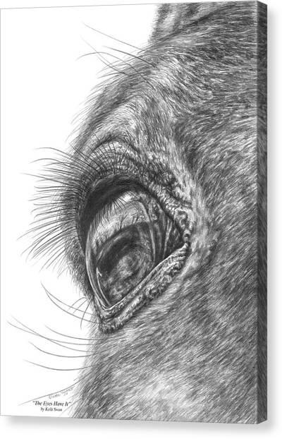 The Eyes Have It - Horse Portrait Closeup Print Canvas Print