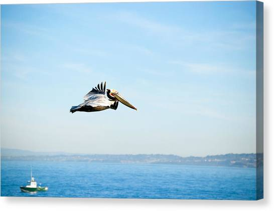 Canvas Print featuring the photograph The Flight by Margaret Pitcher