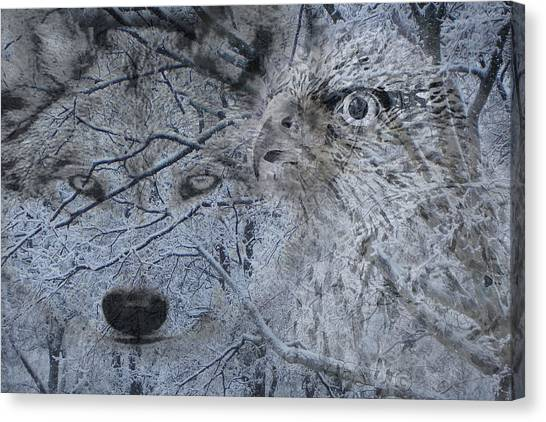 The Forest Has Eyes Canvas Print by Yvonne Scott
