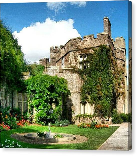 Tulips Canvas Print - The Garden At Dunster Castle by Lauren Dunn