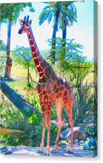 The Gentle Giraffe Canvas Print