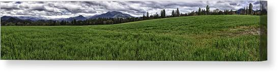 The Green Across Canvas Print by Nathaniel Kolby