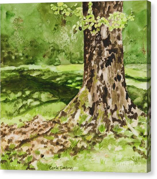 The Green Grass Grew All Around Canvas Print by Carla Dabney