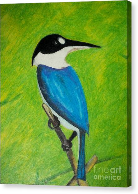 The King Fisher Canvas Print