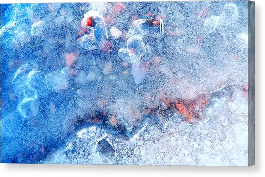 The Last Face Of The Winter Canvas Print