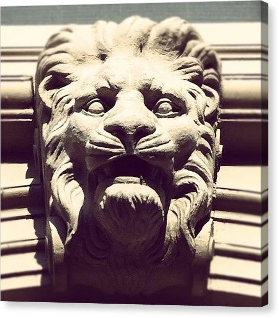 Lions Canvas Print - The #lion Sleeps Tonight by Jenna Luehrsen