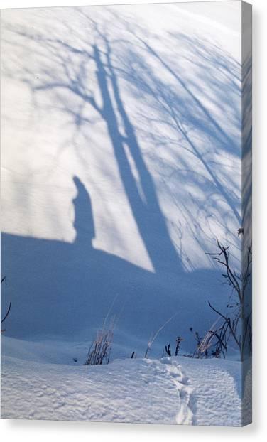 The Lone Path Taken Canvas Print
