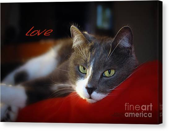 Canvas Print featuring the photograph The Look Of Love by Vicki Ferrari