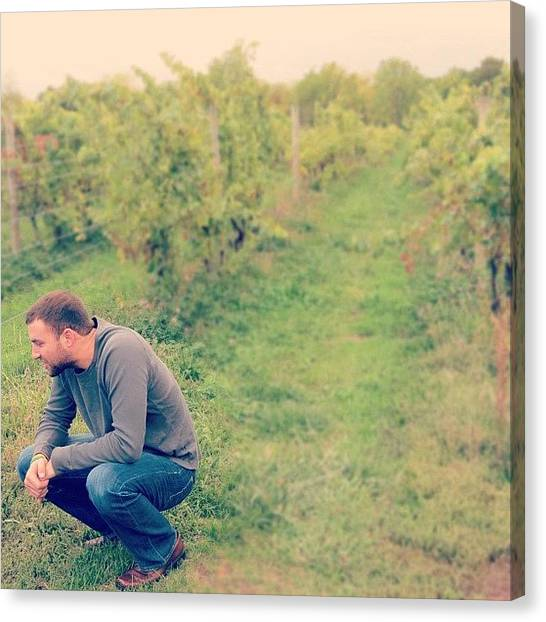 Winery Canvas Print - The Man Thinks Best In A Winery by Jenna Luehrsen