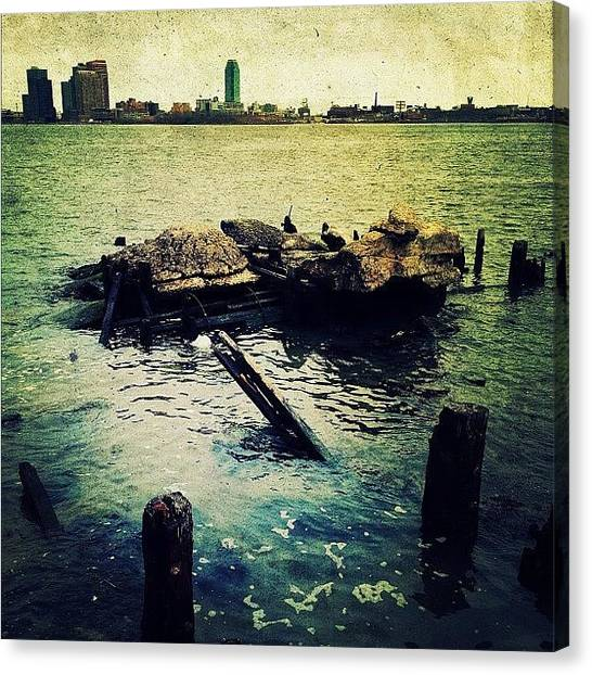 Rock Canvas Print - The Manhattan Shore by Natasha Marco