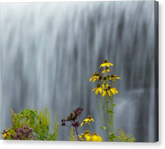 The Middle Falls II Canvas Print by Neal Blizzard