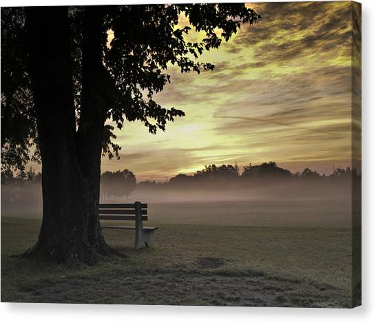 The Morning Golden Light Canvas Print