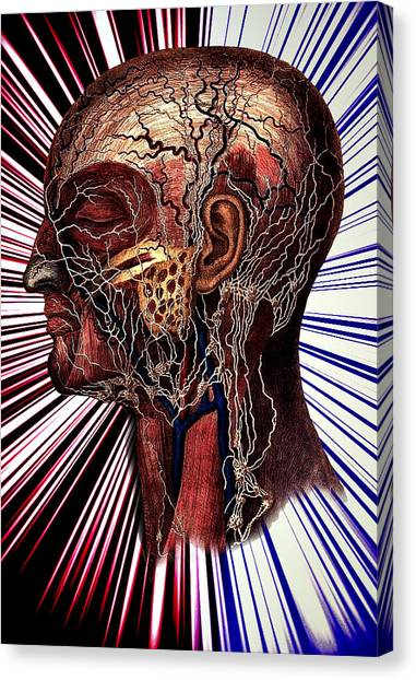The Nerve Canvas Print by Nok
